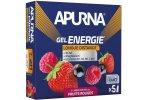 Apurna Etui gels +2h d'effort Fruits rouges
