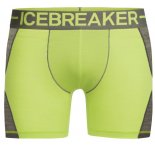 Icebreaker Anatomica Zone M