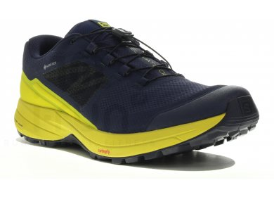 Classique Chaussures De Running Salomon Femme Xa Elevate Gtx
